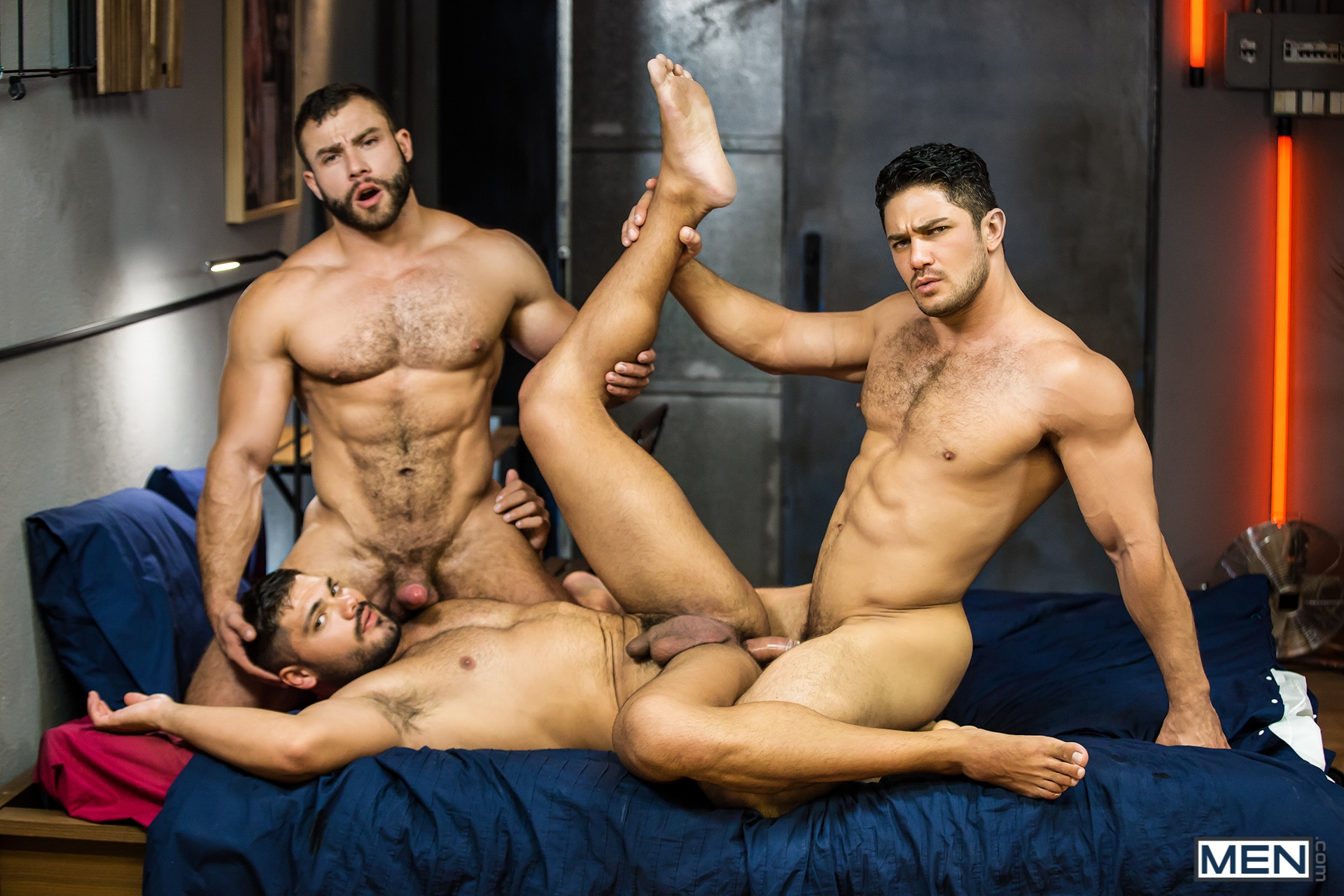 Gay picture muscle sex